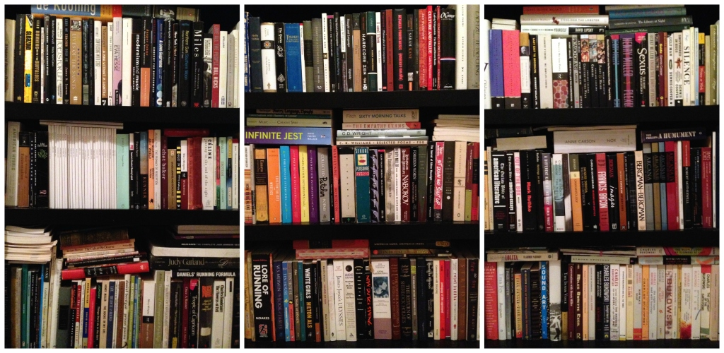 bookshelves January 2015